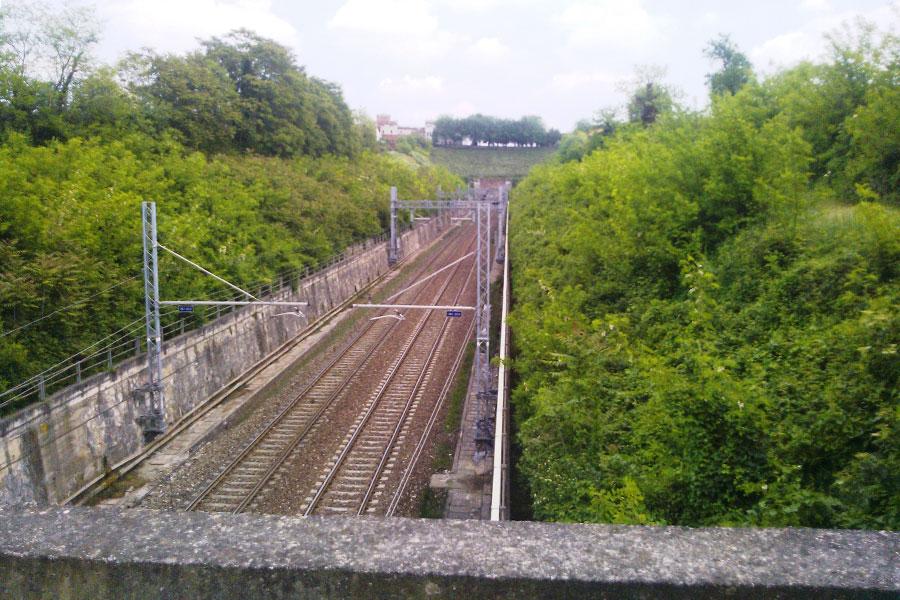 Sfalciatura_ferrovia_prima_01