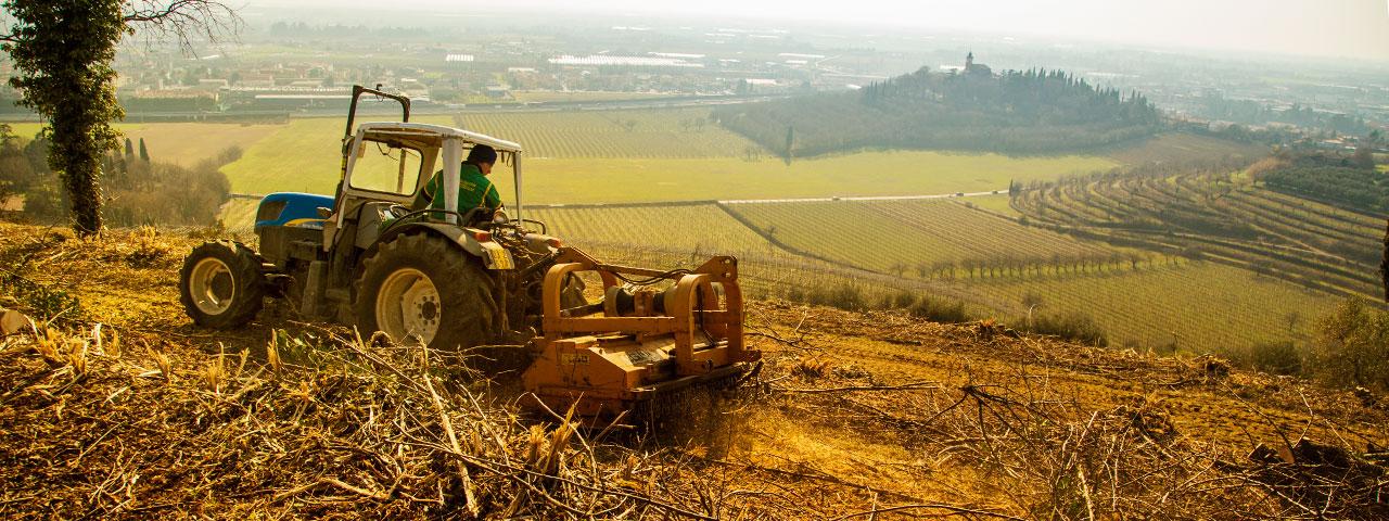 tosi_giuseppe_lavorazioni_agricole_02