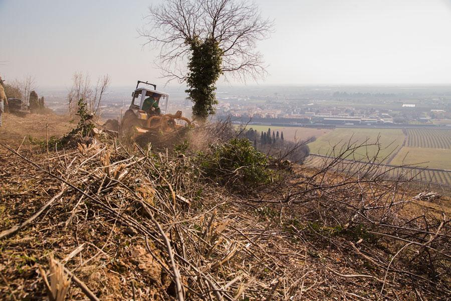 lavorazioni_agricole_04