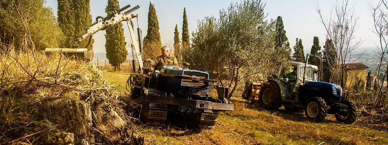 tosi_giuseppe_lavorazioni_agricole_01